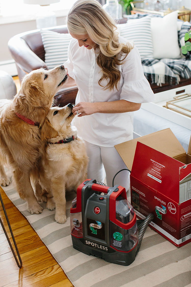 Abby of AbbyCapalbo.com struggle to keep her carpets clean with two dogs running around. Check out how the Hoover Spotless helped save her favorite rug. Spot cleaning made easy!